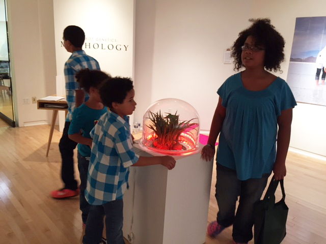 Visitors of all ages enjoyed interacting with the PlantBots!